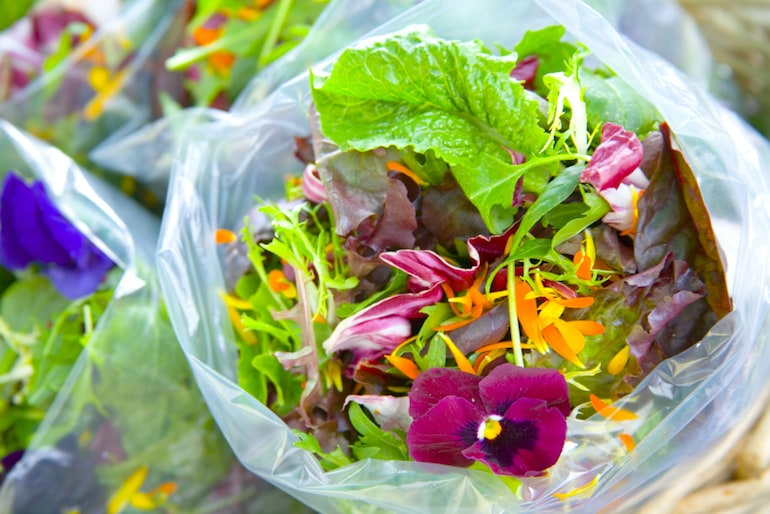 how to prepare edible flowers