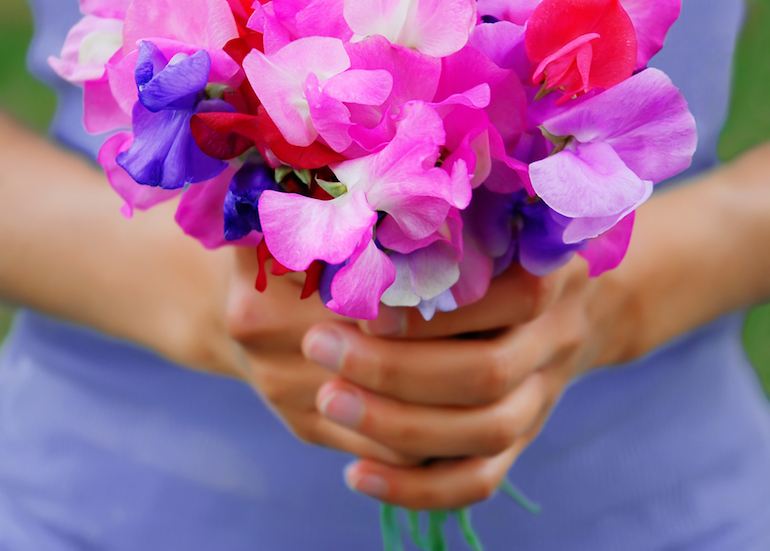 Hands holding bouquet of sweet peas