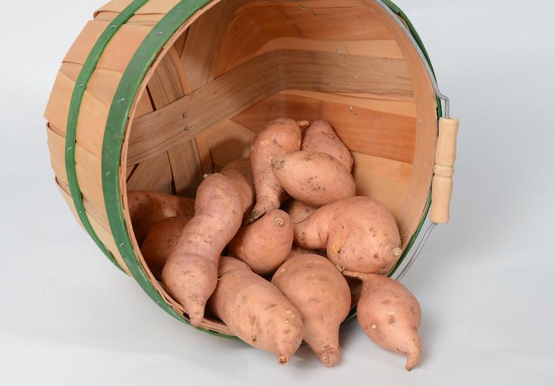 Sweet potato 'Makatea' from Thompson & Morgan
