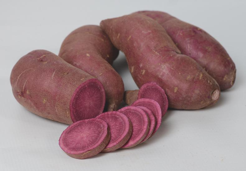 Sweet potato 'Tahiti' from Thompson & Morgan