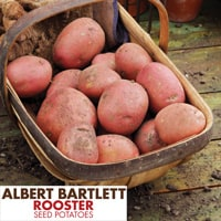 Rooster Potatoes