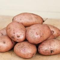 Sapro Mira Potato