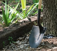 clean gardening tools