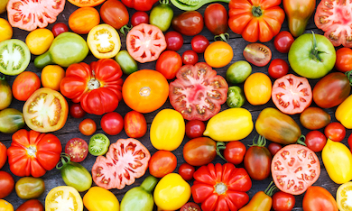 Selection of multi-coloured tomatoes