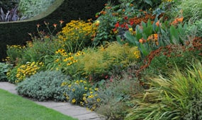 top 10 hardy plants for late summer