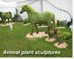 Hampton Court Palace Flower Show 2012 - Animal Plant Sculptures
