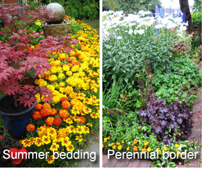 Andrew Tokely's summer bedding display and perennial border