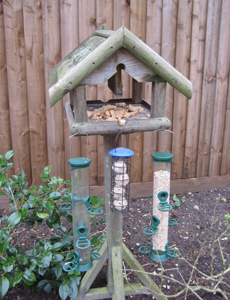 Andrew's well-stocked bird table
