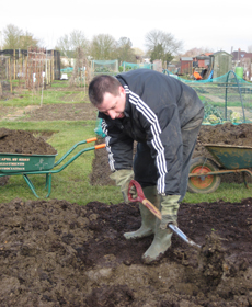 Andrew Tokely, digging his allotment