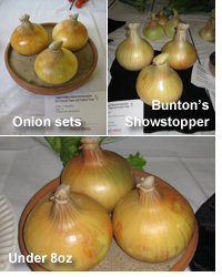 Onions - sets, under 8oz and Bunton's Showstopper