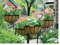 Add water-retaining gel to hanging basket & container compost