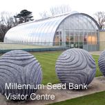 Visit the Millennium Seed Bank at Wakehurst Place