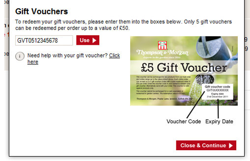 gift voucher pop up example