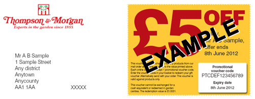 promotional voucher letter example